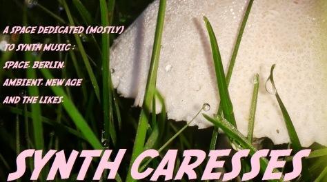 SYNTH CARESSES - seta - copia4