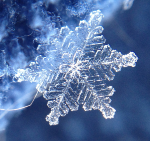Snowflake iPhone