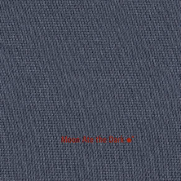 Moon Ate The Dark - II