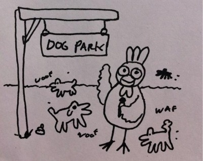 ^ KN (your interviewer) at the dog park